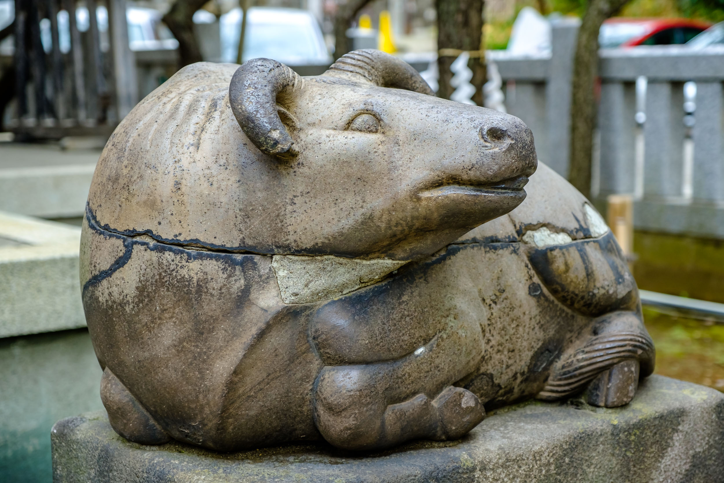 Bulls are one of the things that make a Tenjin shrine. Just make sure to rub its head and then yours!