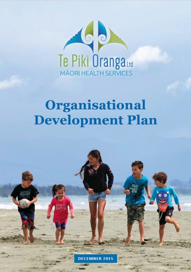 Organisation Development Plan