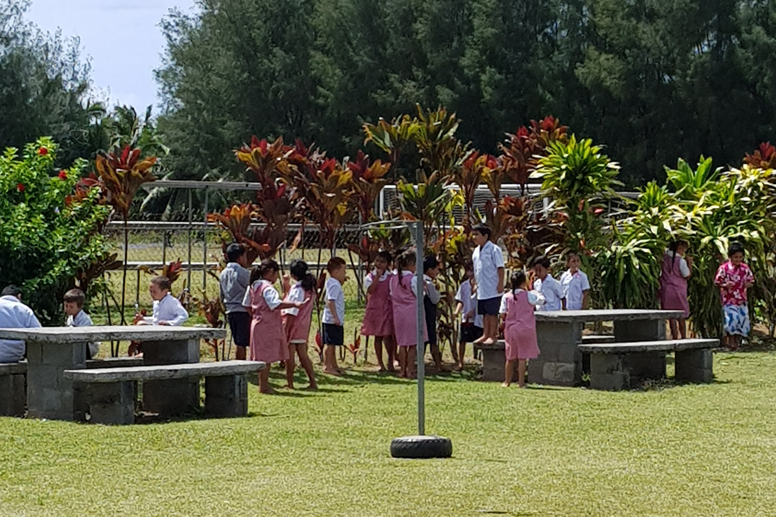 Takitumu Primary School students brushing their teeth as part of their Oral Health Project