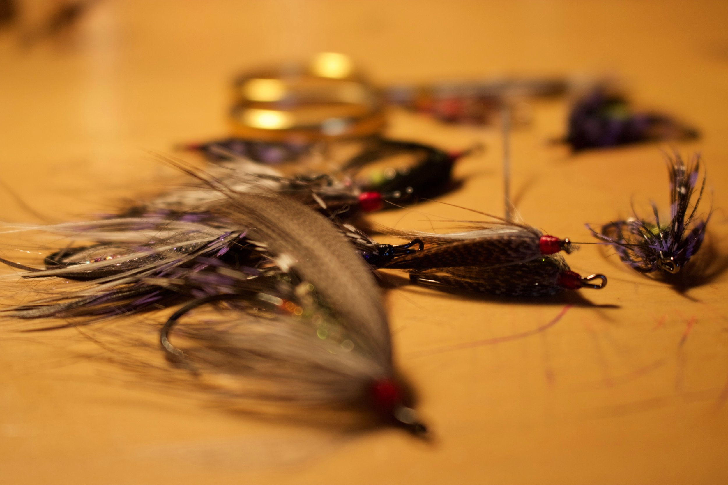 An assortment of feather wings and soft hackles for Trinity River Steelhead.