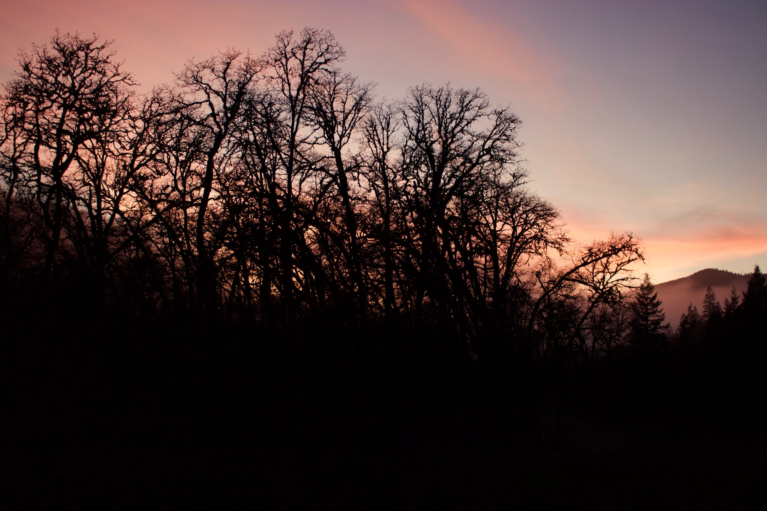 Last light.