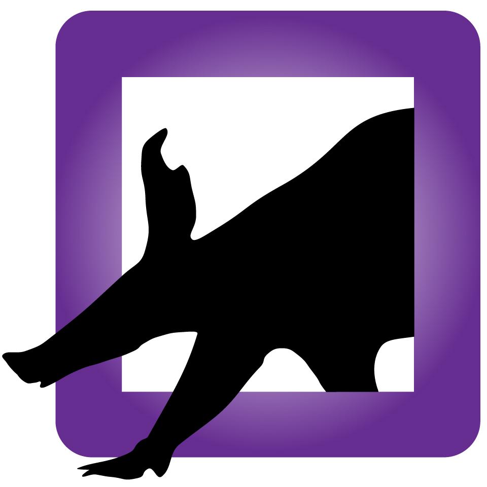 Logo Only_Color-100.jpg