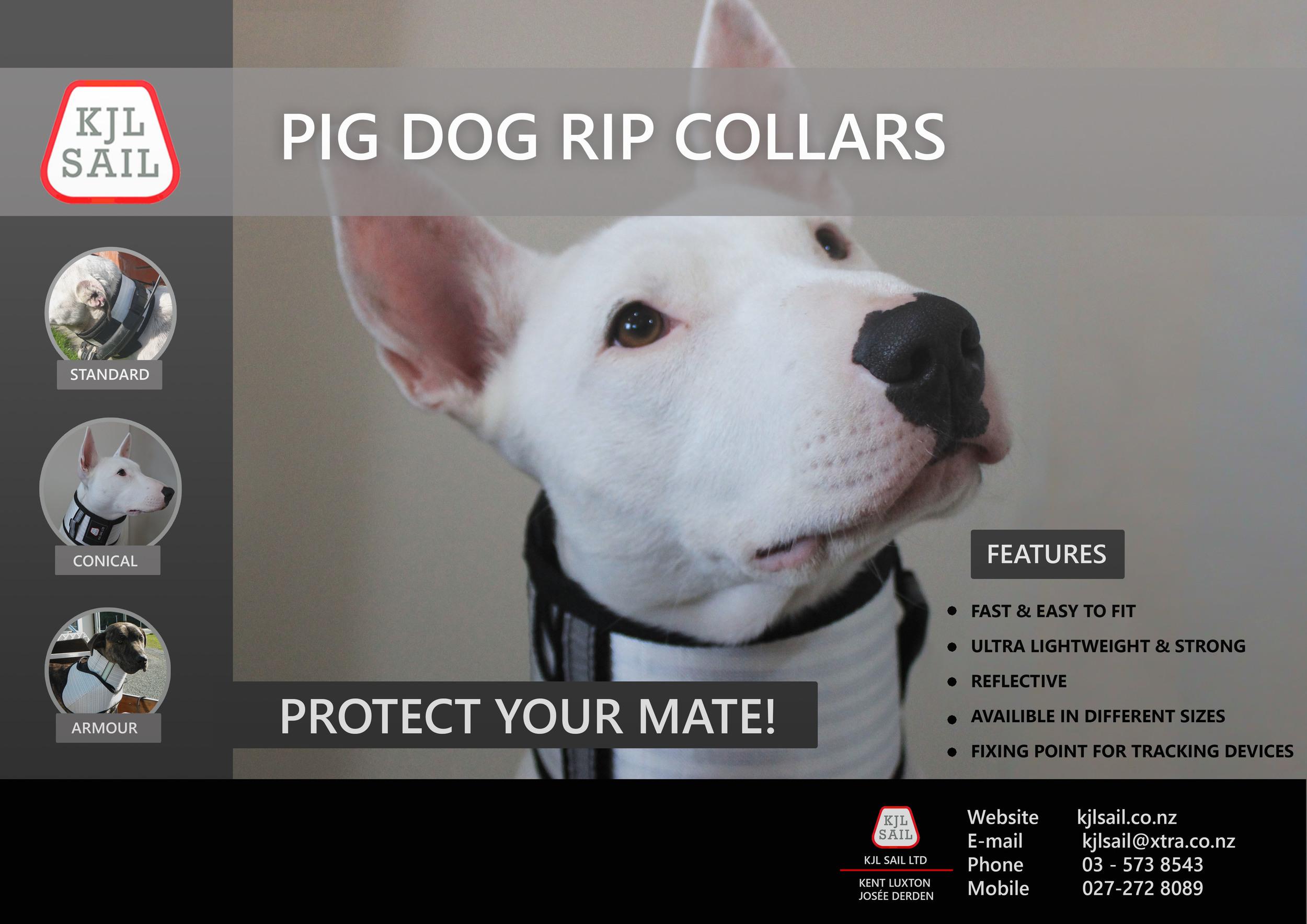 Pig dog Rip Collar New Zealand - Hunting supplies