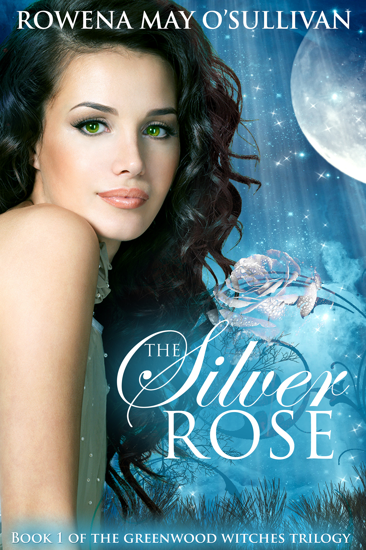 The Silver Rose Book Cover - Author Interview