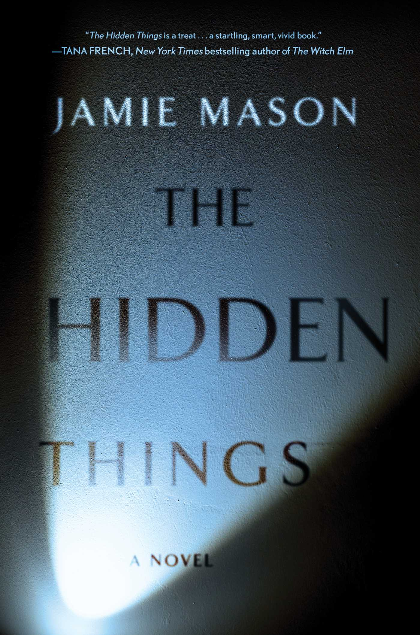 The Hidden Things by author Jamie Mason