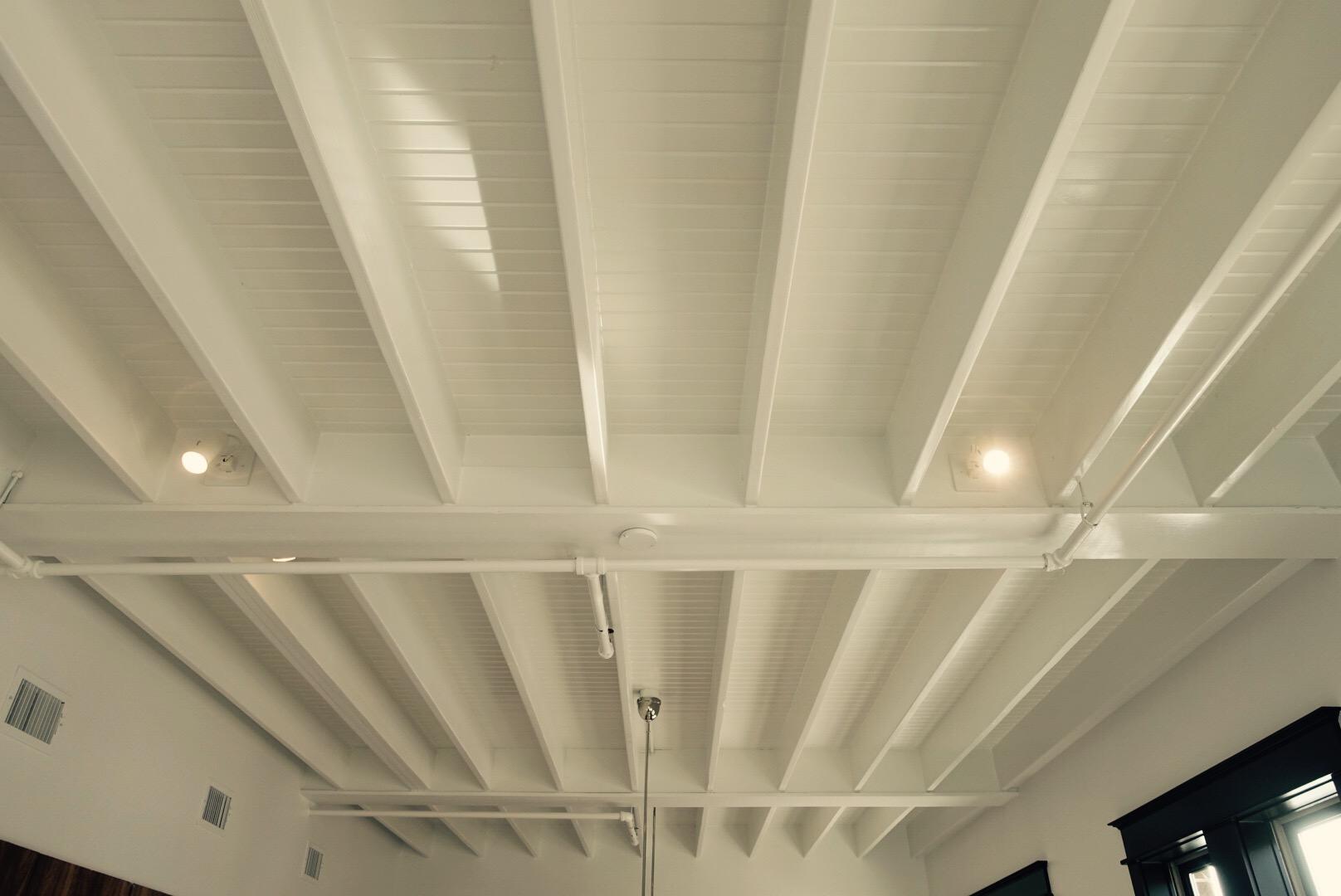 Downstairs Ceiling.jpg