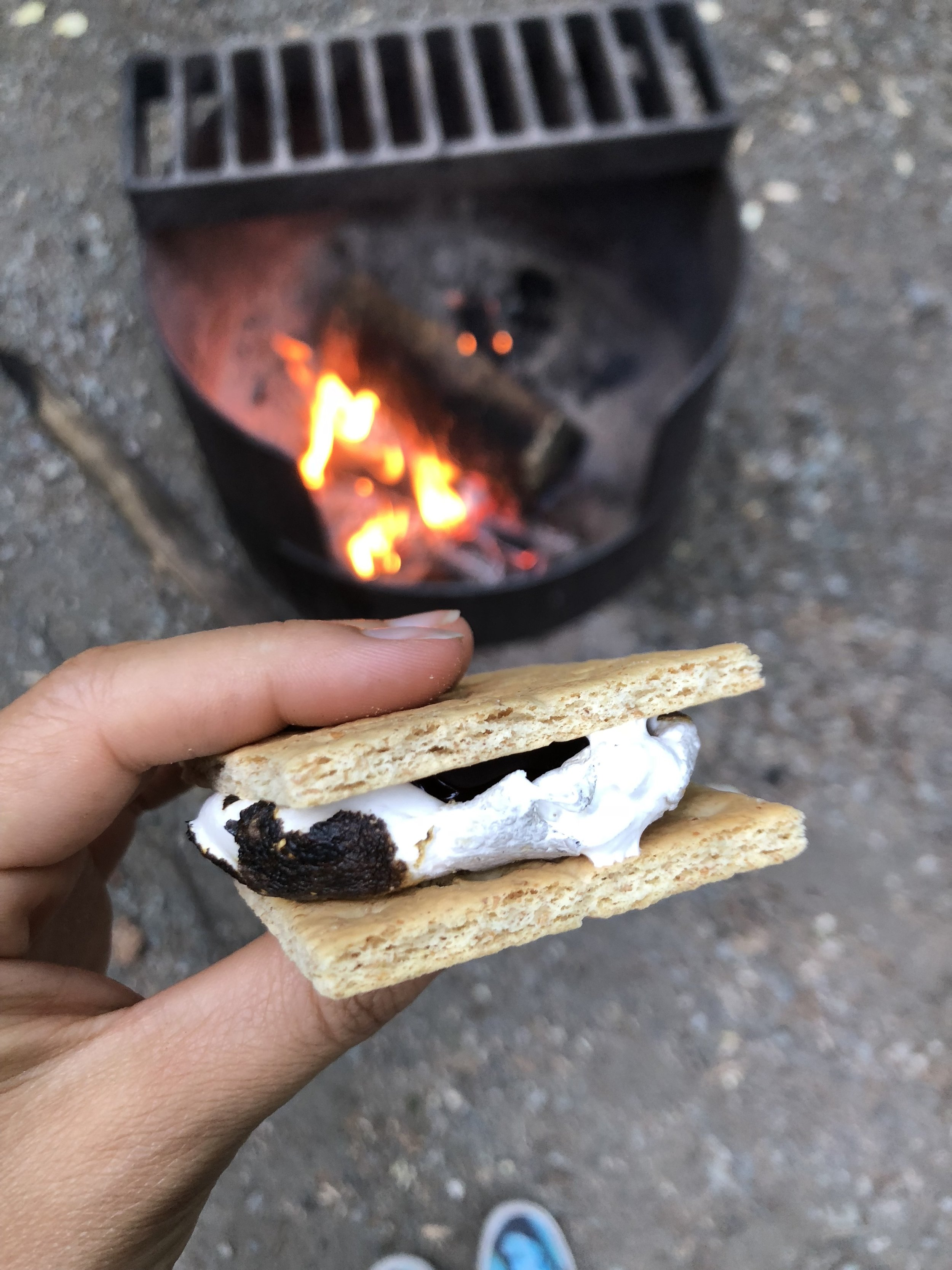 In case you didn't know, Dandies marshmallows are vegan