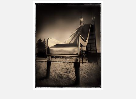 chemanus slide vertical.jpg