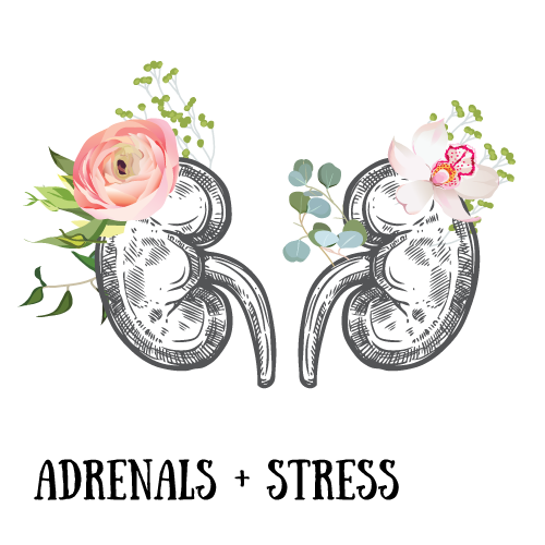 adrenals-and-stress.png