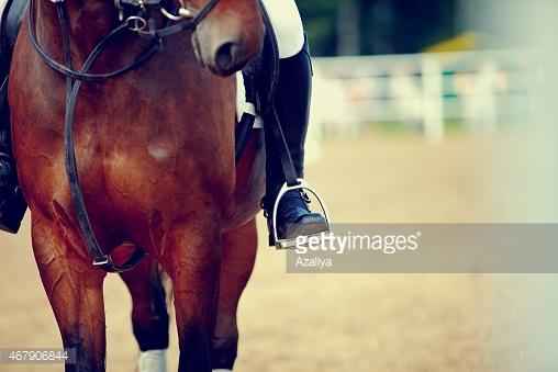Photo by Azaliya/iStock / Getty Images
