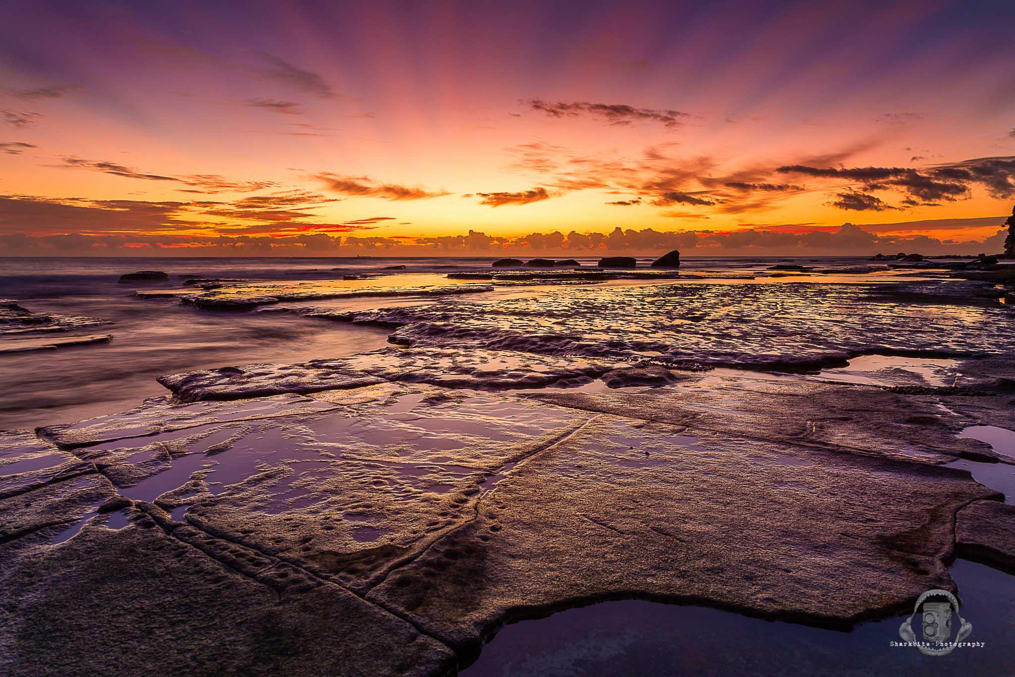 Crown of the Earth - Sunshine Coast -1.jpg