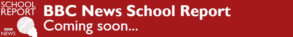 BBC News School Report Banner (2).png