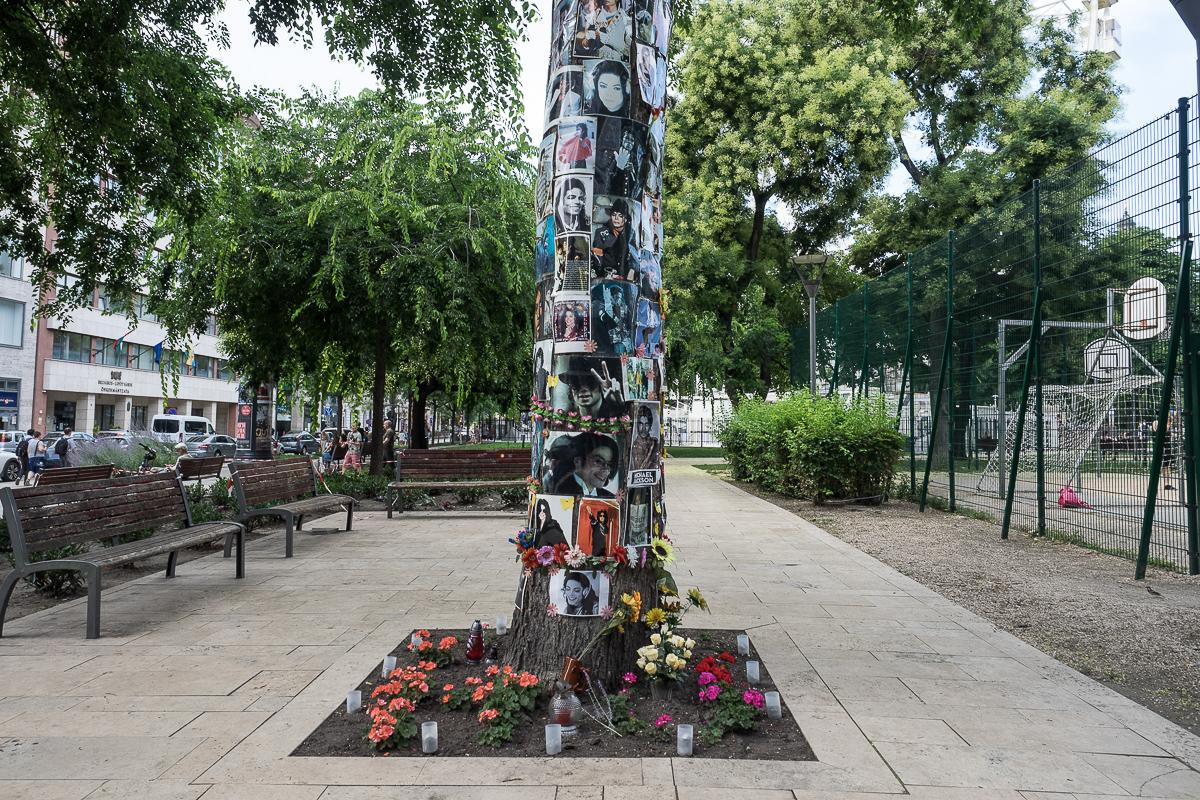 BONUS: Budapest's Michael Jackson Memorial Tree