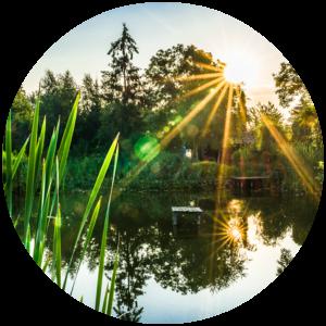 Citrefine Citriodiol insect repellent - river