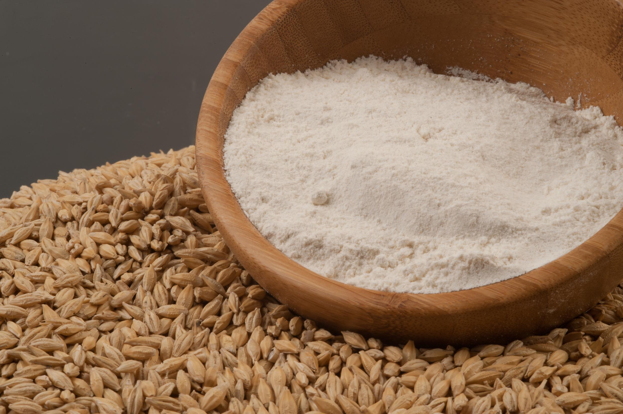 Harina de Cebada    Barley Flour