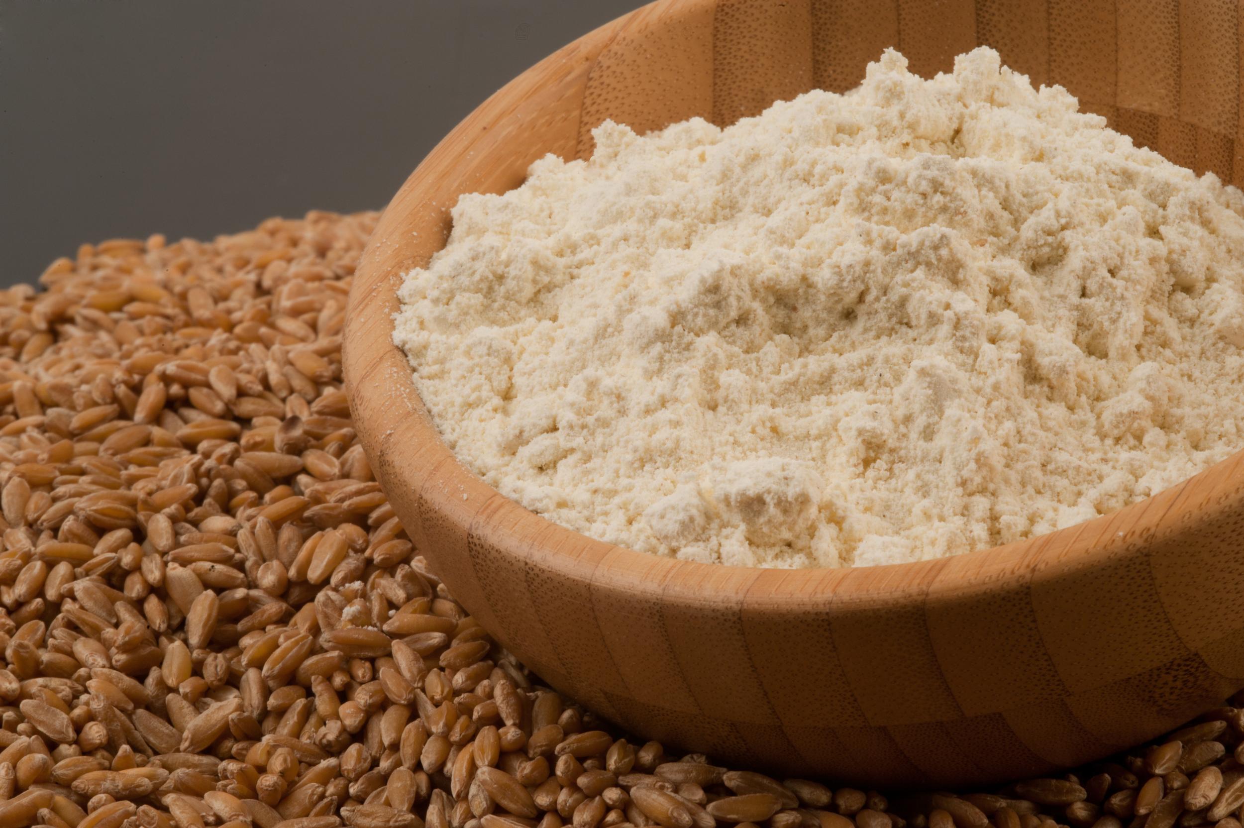 Harina de Tritordeum Blanca  Tritordeum Flour