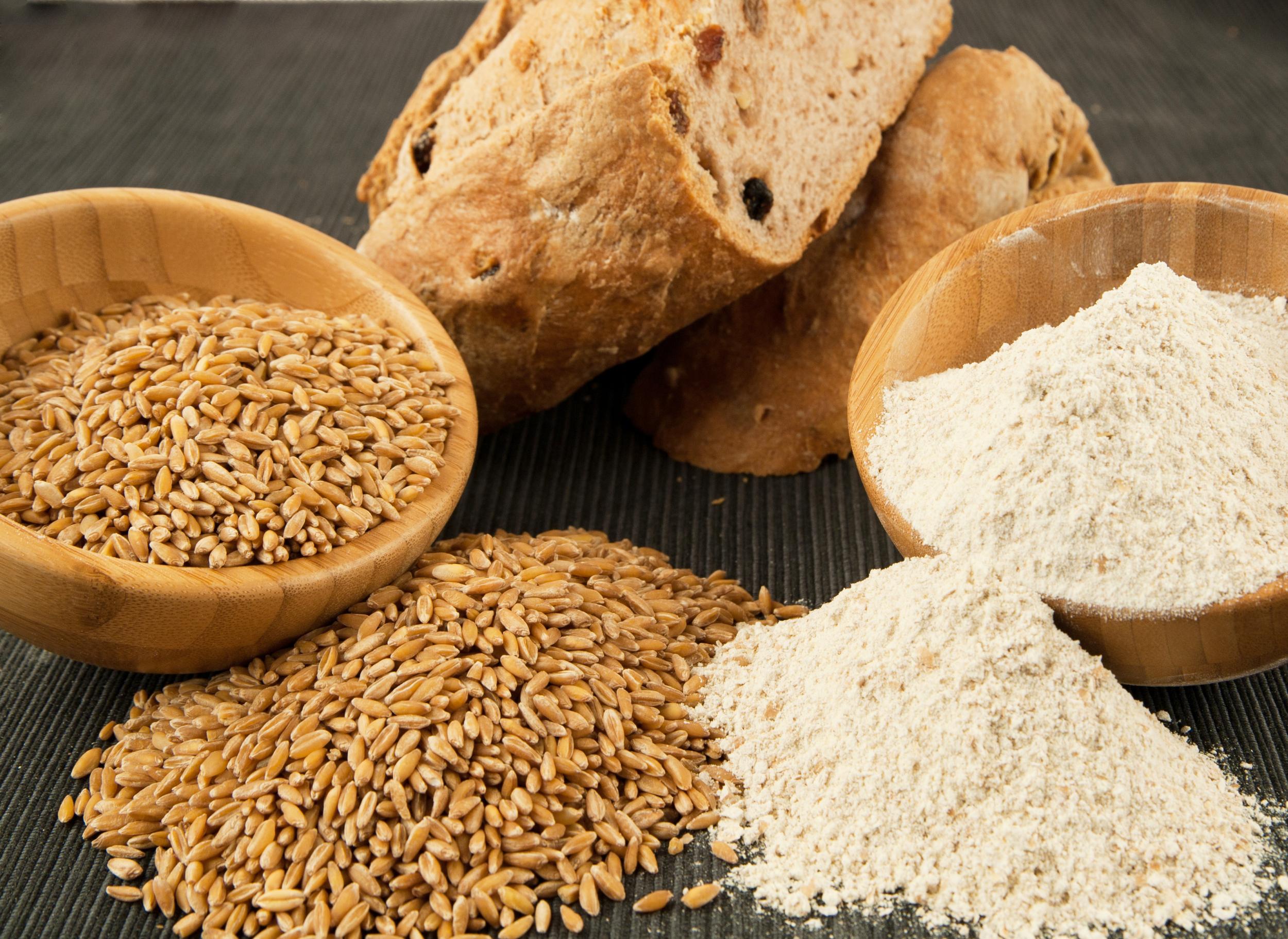 Harina de Tritordeum Integral    Wholegrain Tritordeum Flour