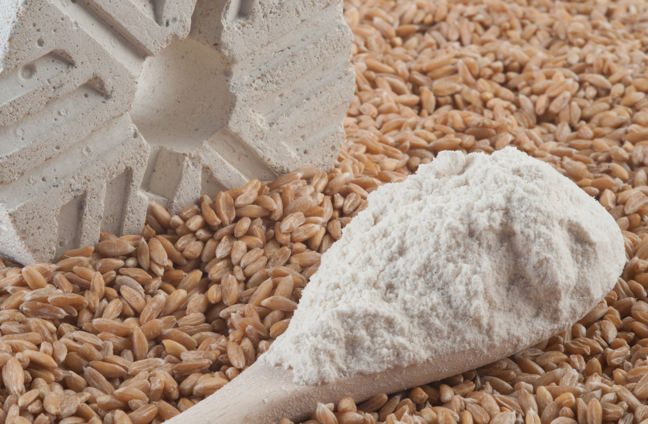 Harina de Espelta  Spelt Flour