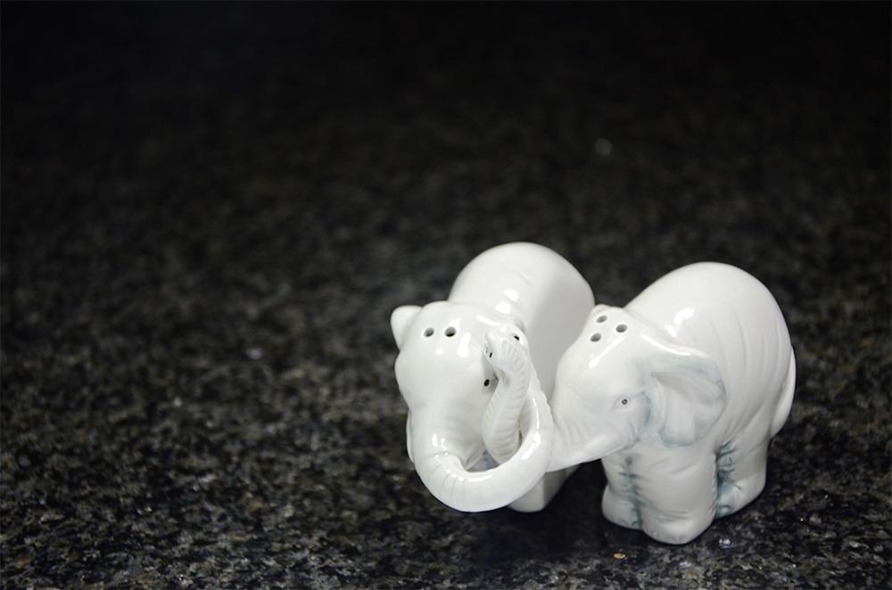 Elephant_LR_1000.jpg