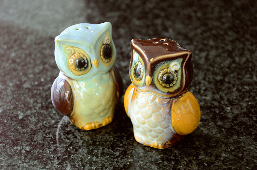 owls2_1000.jpg
