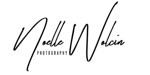 Smaller Noelle Wolcin Photography.jpg