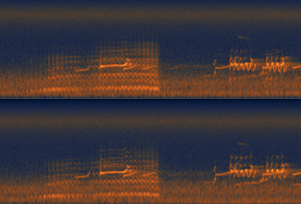 Curlew And Snipe Spectrogram