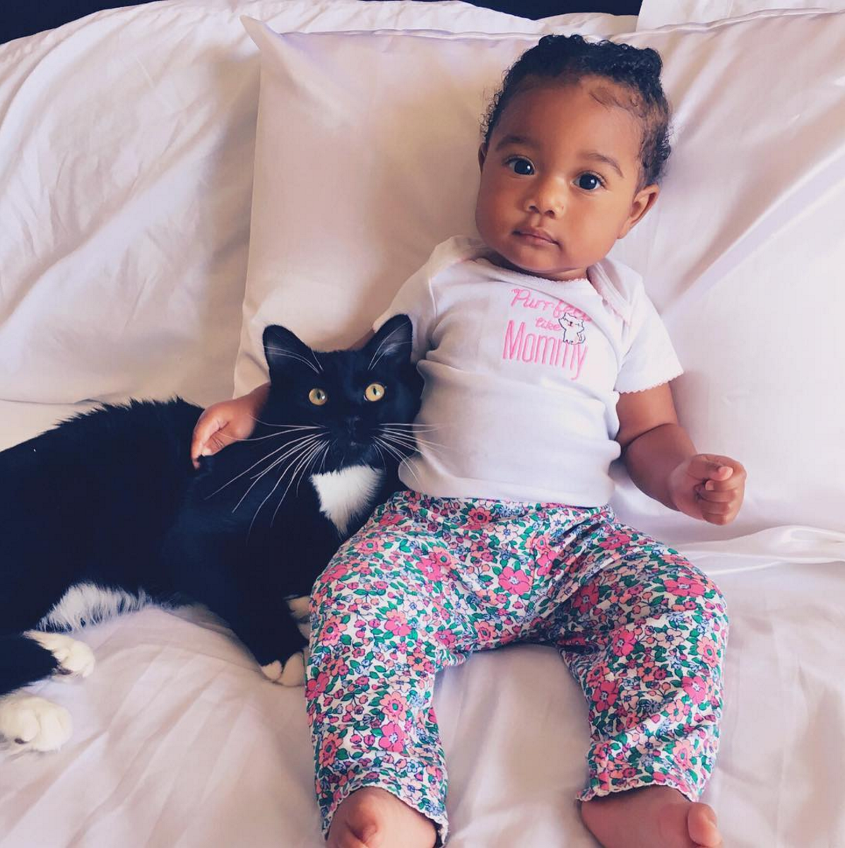 Purrfect Like Mommy.
