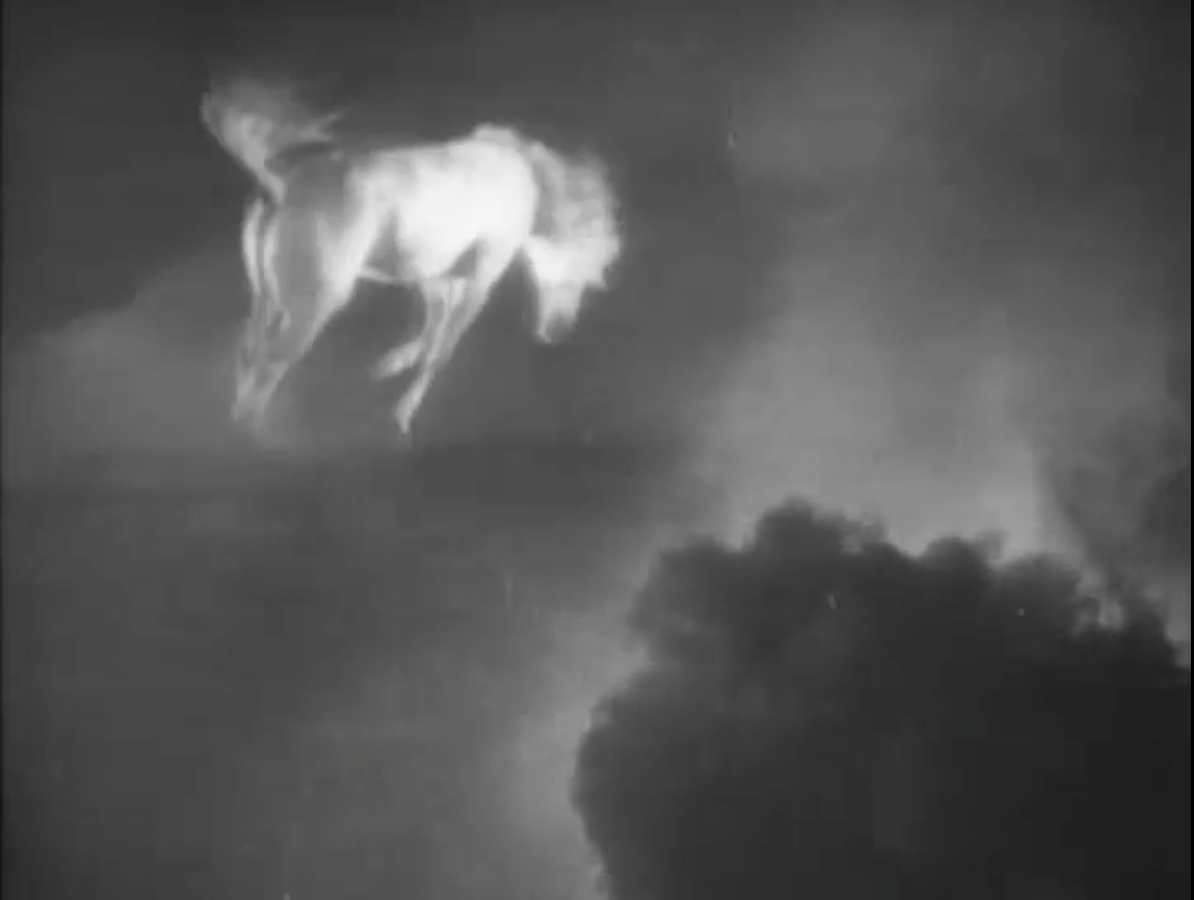 "a wild horse bucks across the sky as the dreaded ""norther"" approaches"
