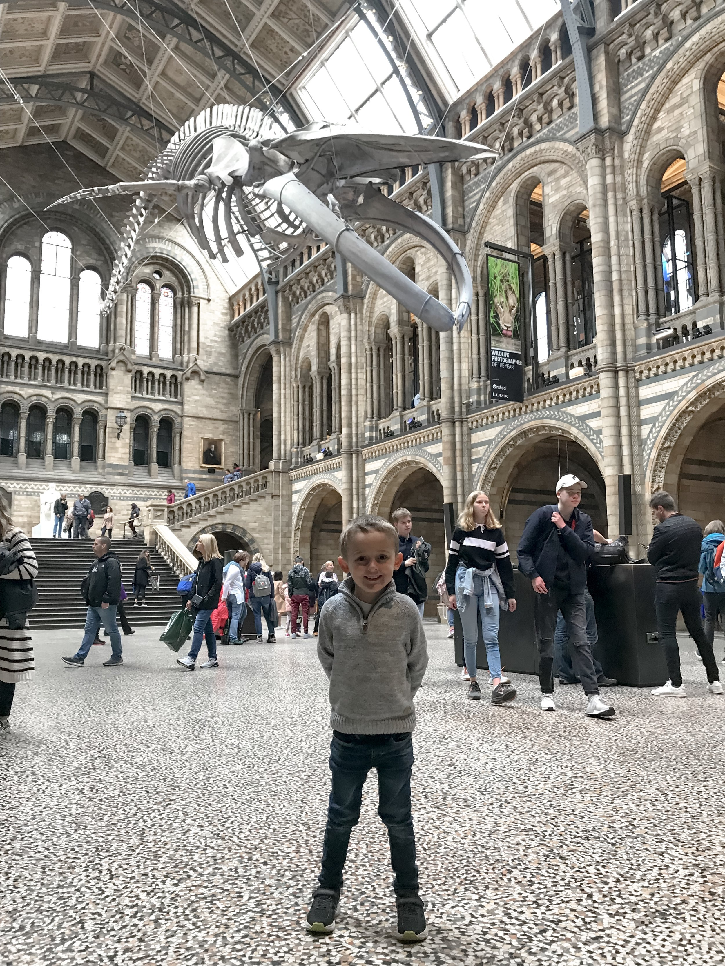 natural-history-museum-london.jpg