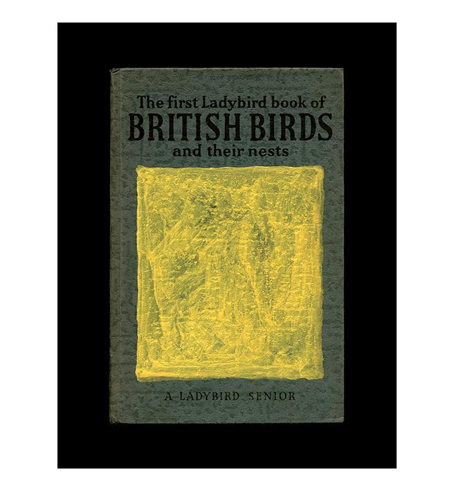 Brisitish Birds     Archival digital C-type print an Hahnemuhle Pearl Rag, 100x 70cm, 2016 Augustine Carr.