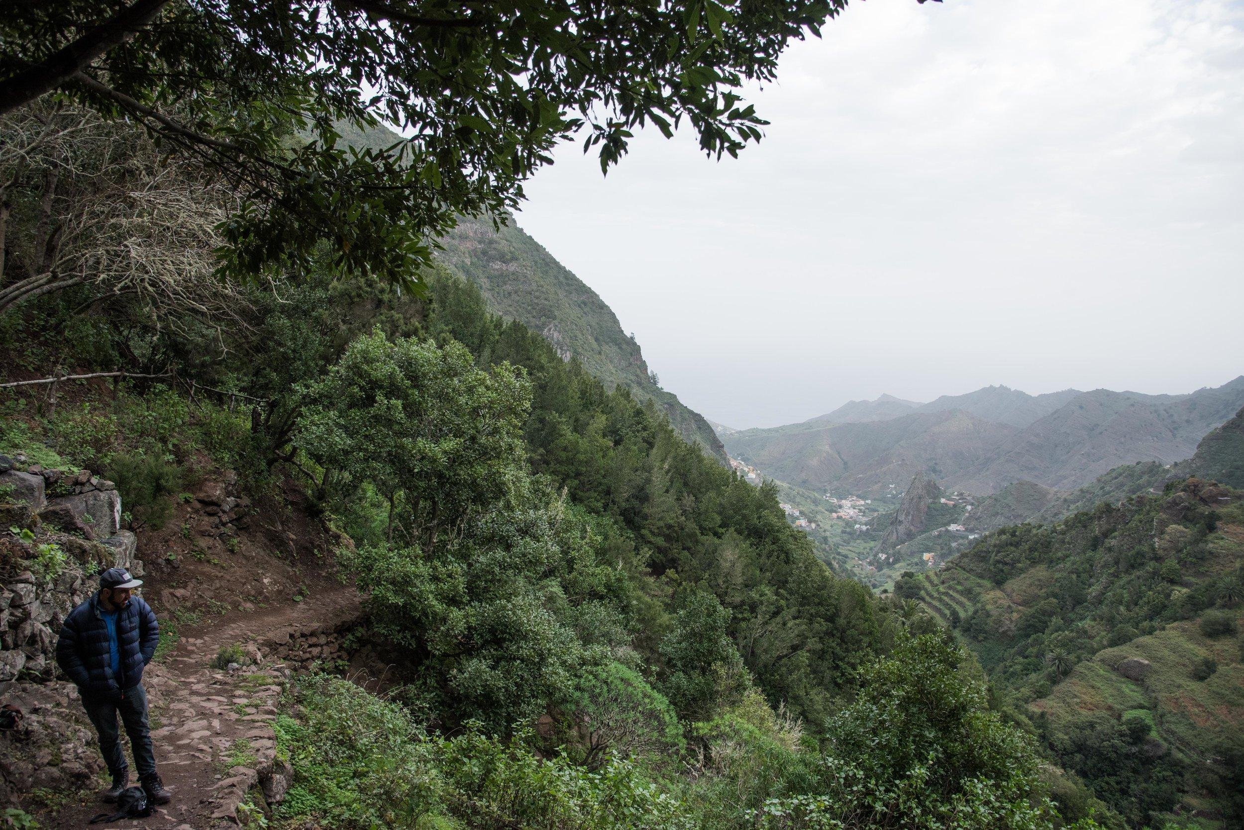 Path to the valley floor.  La Gomera, Canary Islands.