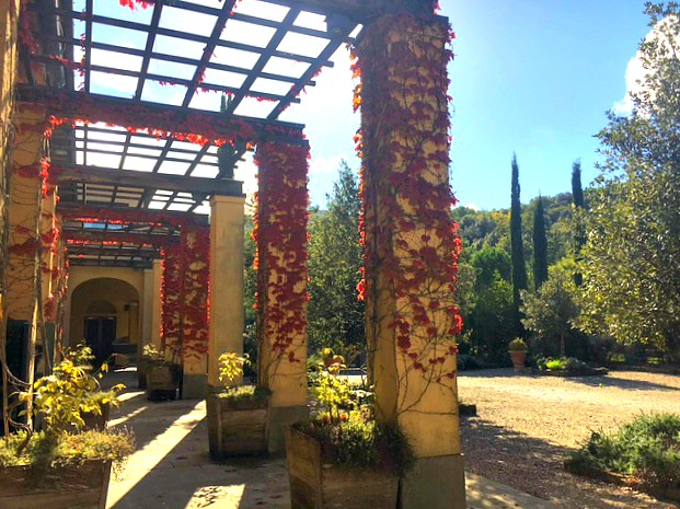 The fall foliage at Castiglion del Bosco