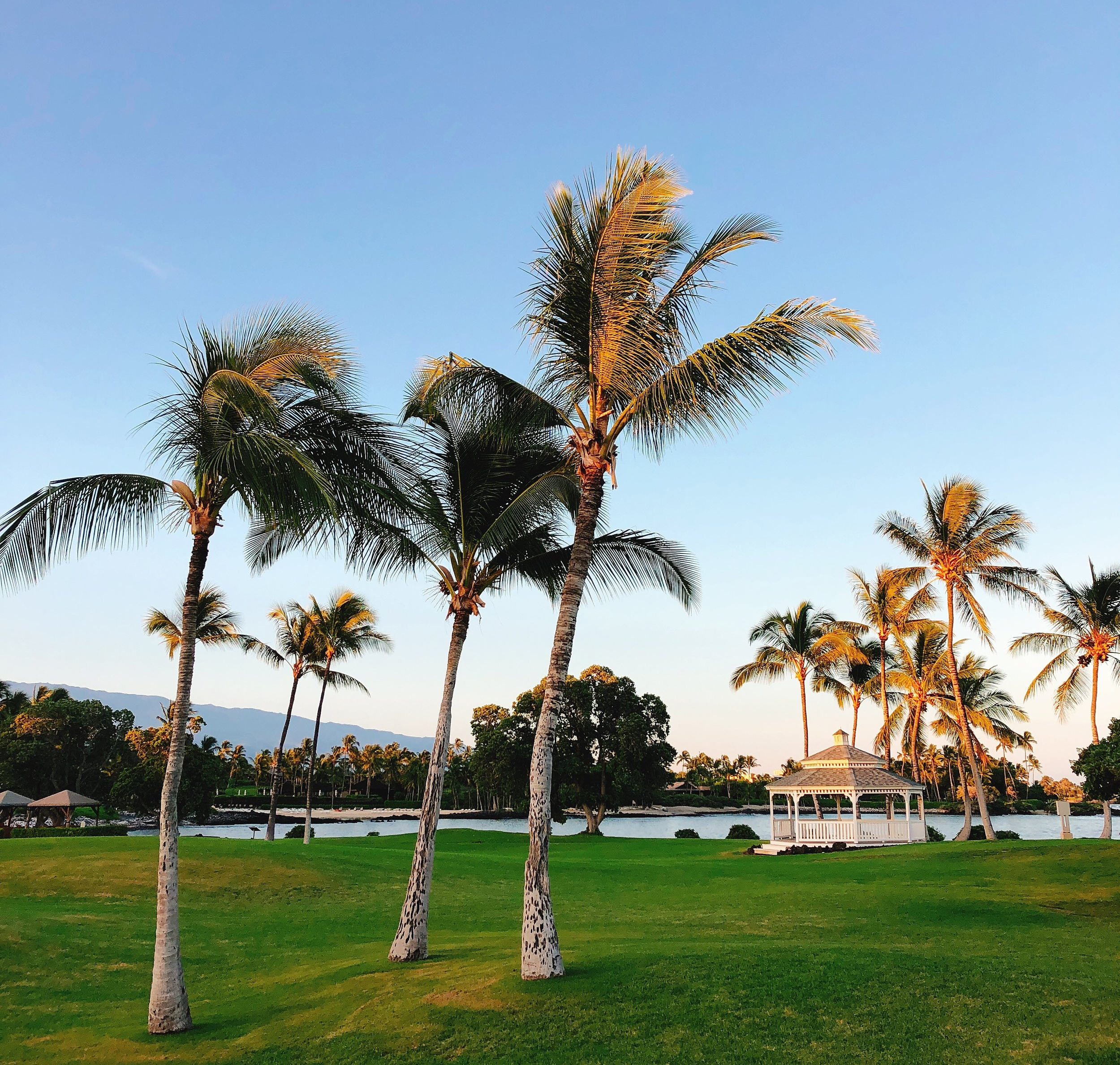 TOP FIVE LIVE - Hawaii Travel Hacks to Make it Economical for Families