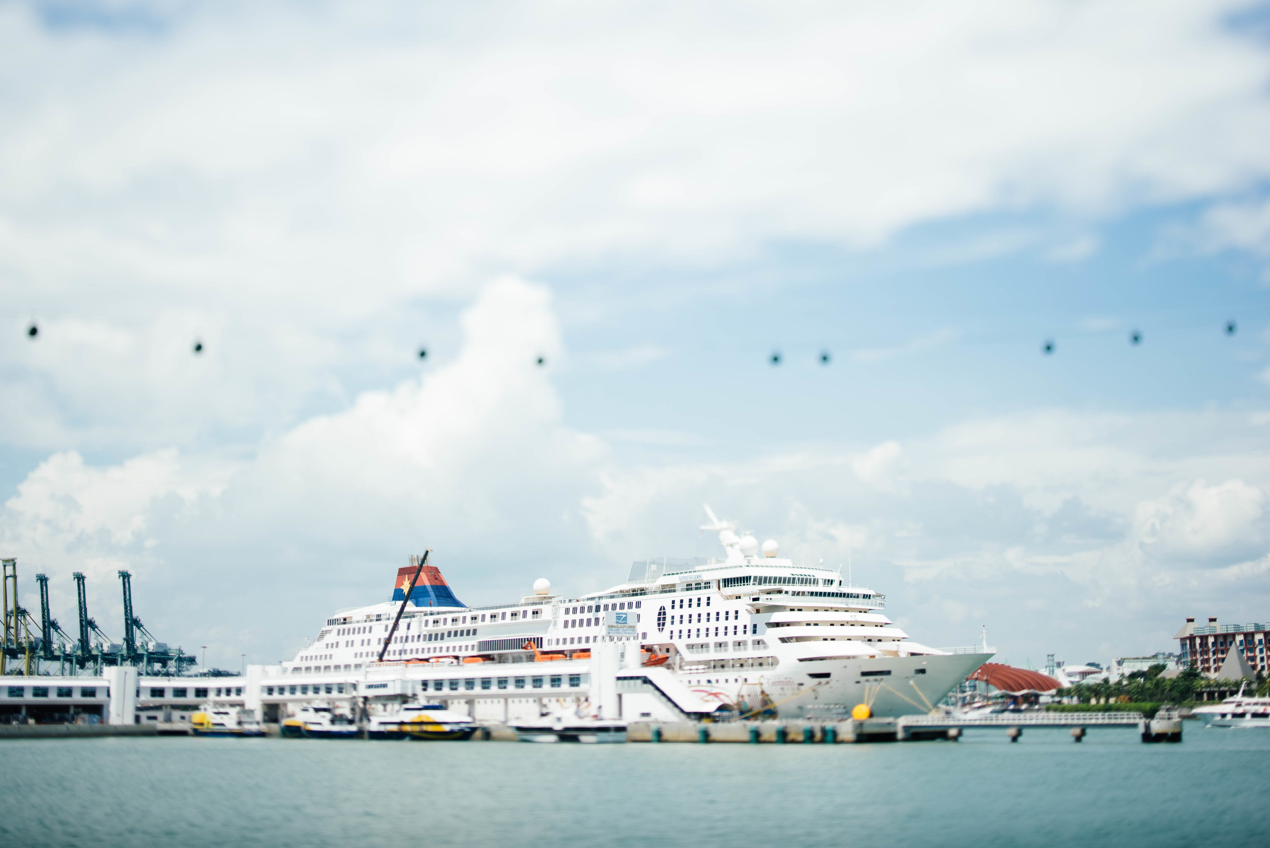Cruise Lines 101 - .
