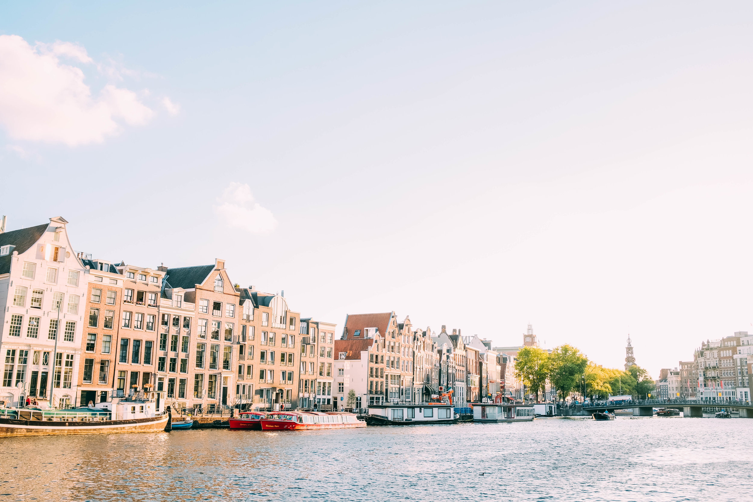 Fun Facts about Amsterdam… - .