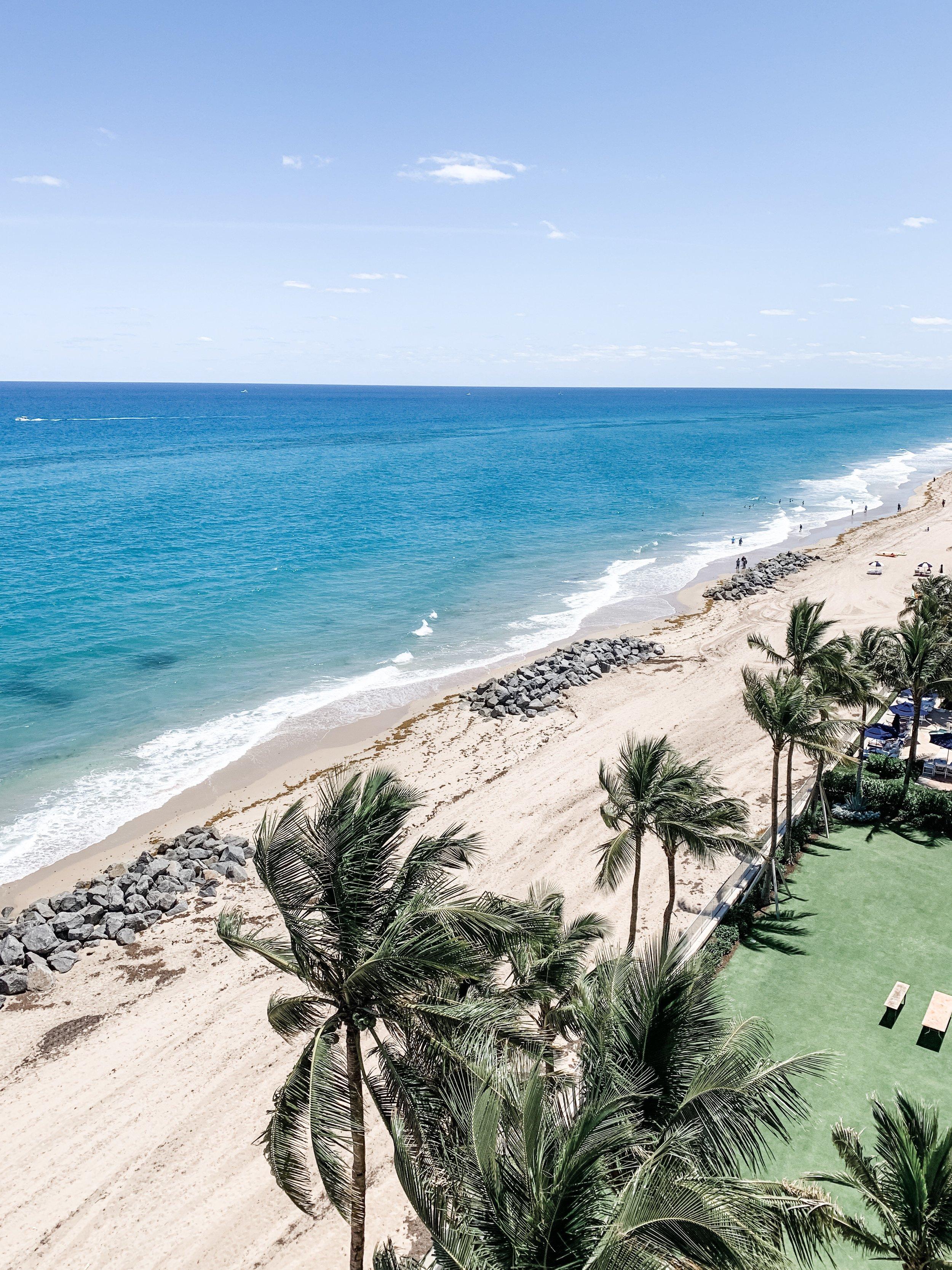 Palm Beach - .