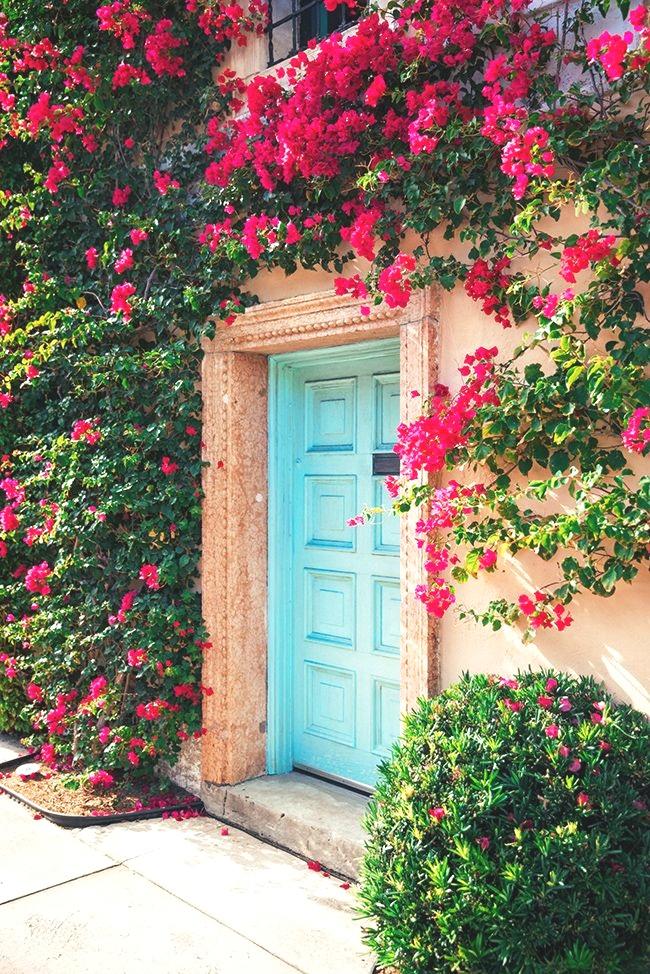 Dress_ Elina Lebessi (purchased at CJ Laing) Shoes_ Saint Laurent Bag_ Aranaz Earrings_ Rebecca de Ravenal Scarf_ Gucci Glasses_ Karen Walker Across the street from Via Mizner in Palm Beach, is the prettiest blue doorway surrounded by gorg.jpeg