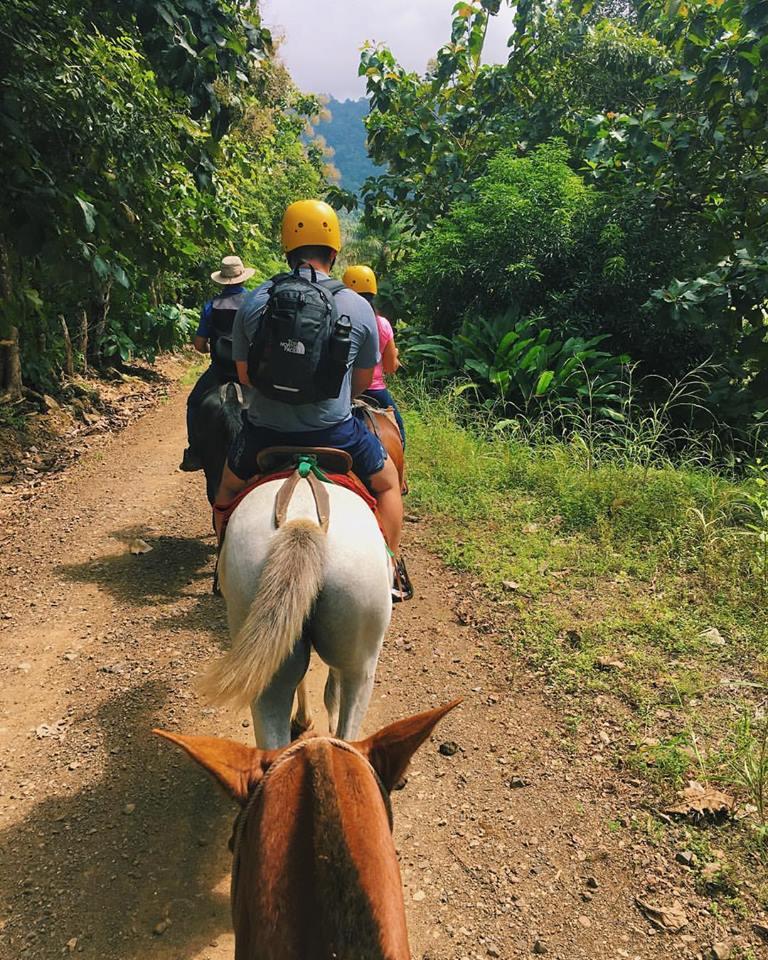Horseback riding through the rainforest