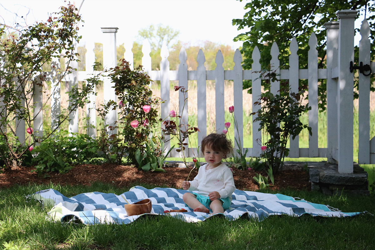 Picnics in our backyard