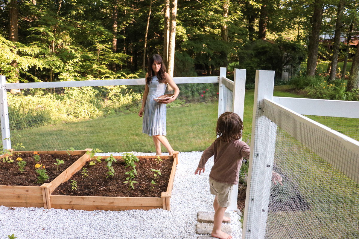 our veggie garden reveal | root + dwell