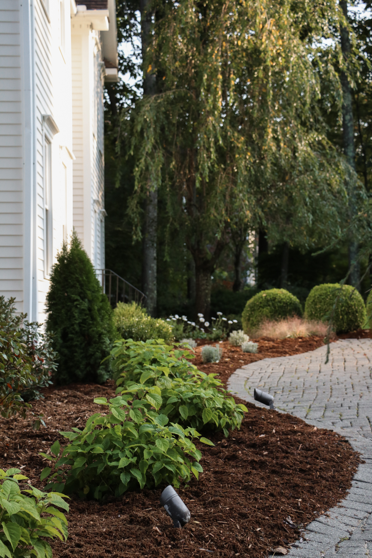 Our Front Landscaping Makeover Reveal | root + dwell