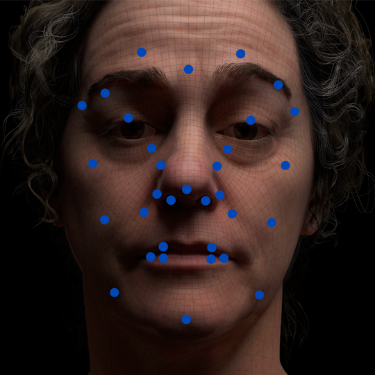 Facial Rigging