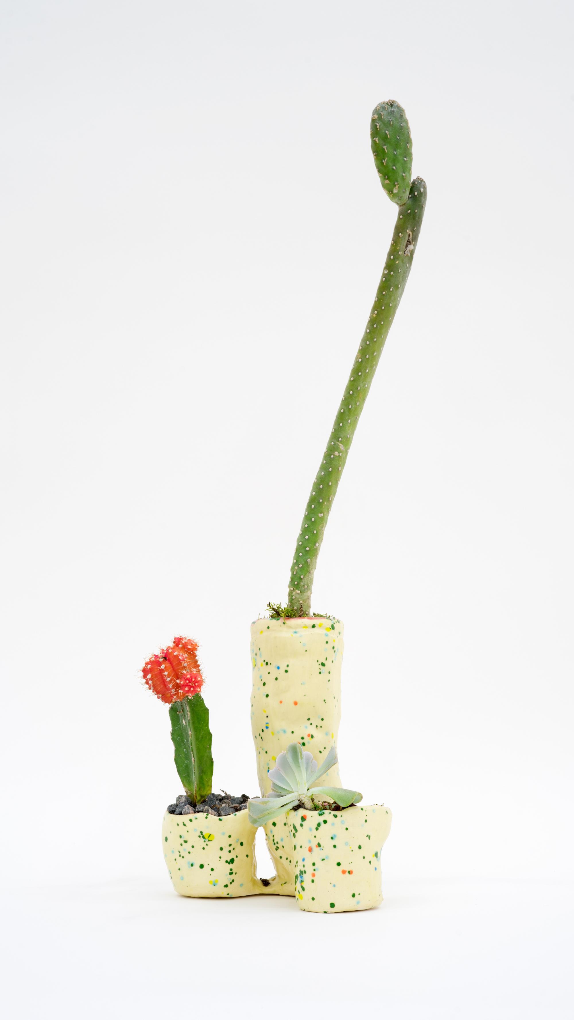 Fully Extended , 2016   Ceramic, cacti  21 × 6 × 4 in  53.3 × 15.2 × 10.2 cm