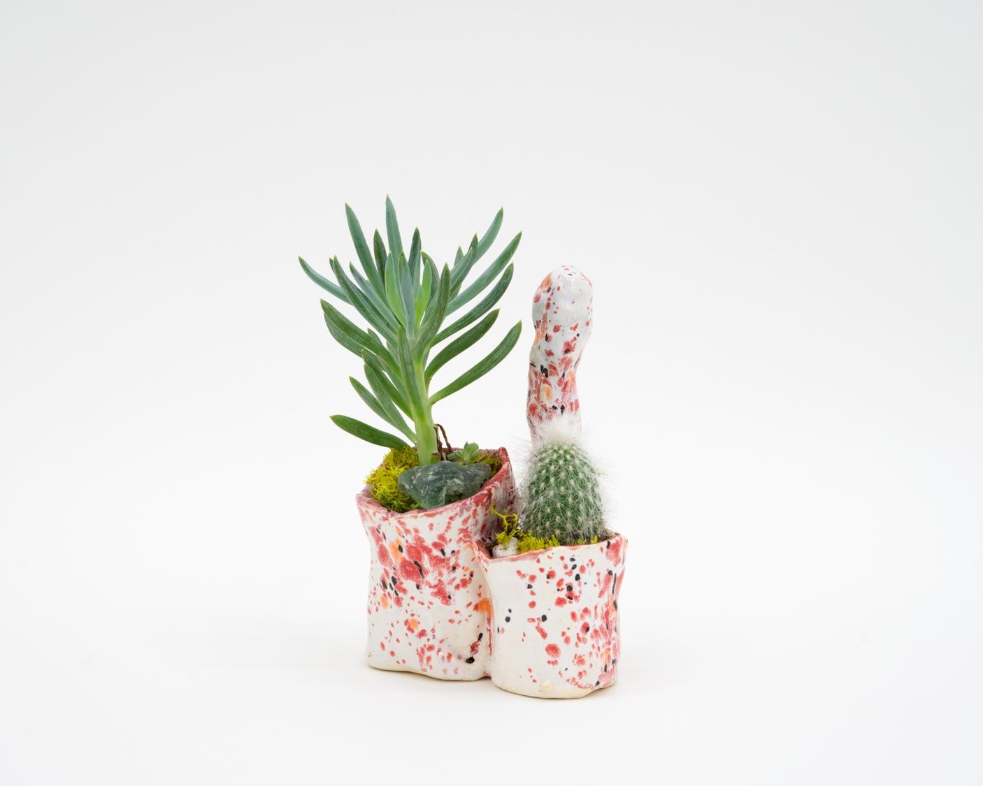 Level with Genitalia    Ceramic, cacti  6 × 4 × 5 in  15.2 × 10.2 × 12.7 cm