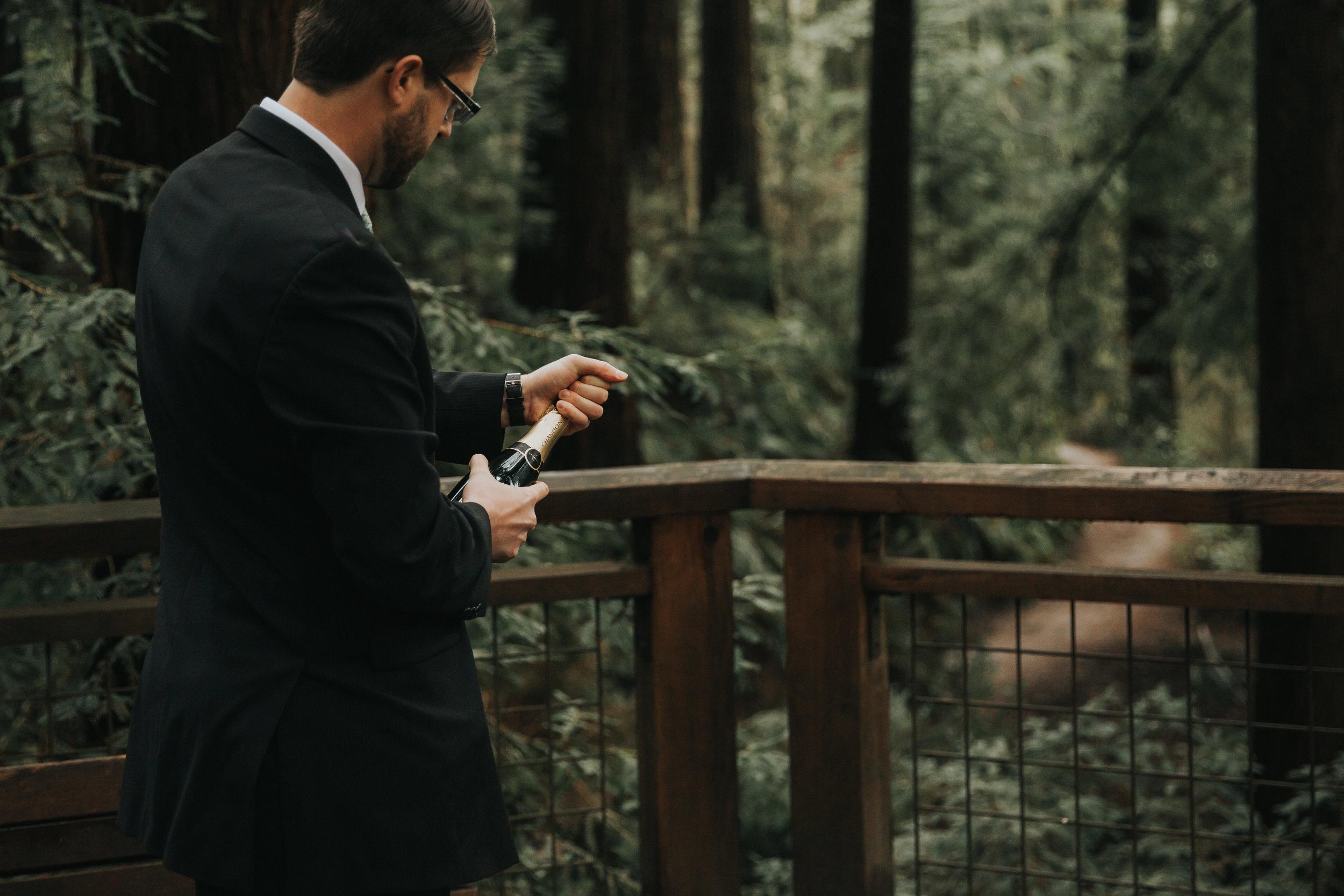 Hoyt Arboretum Wedding Photgraphers-12.jpg