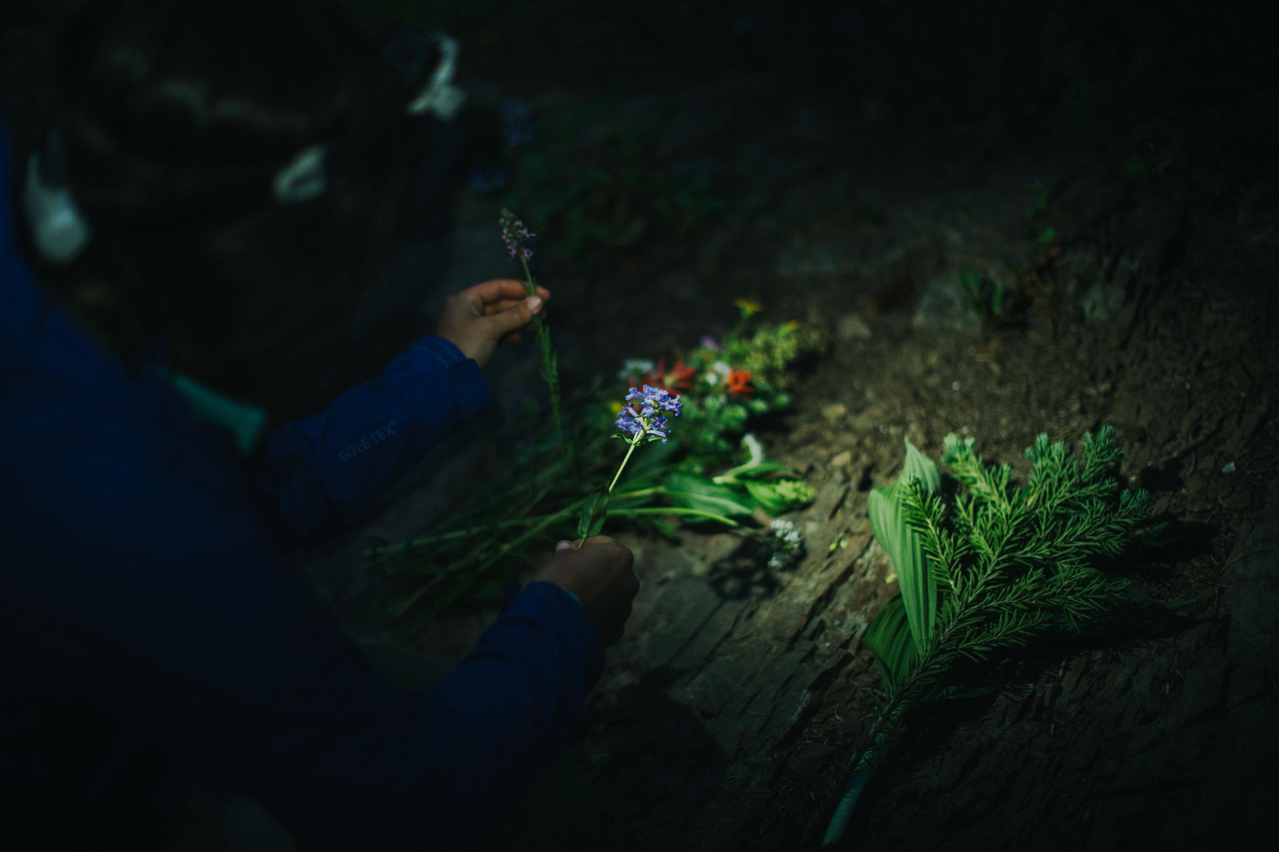BackcountryWedding-20.jpg