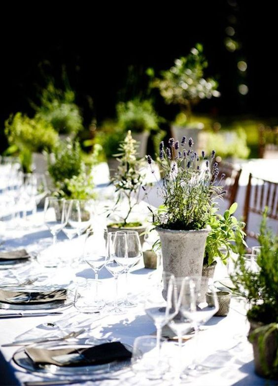 herb tablescape.jpg