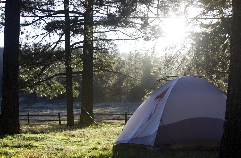white-label-adventures-camp