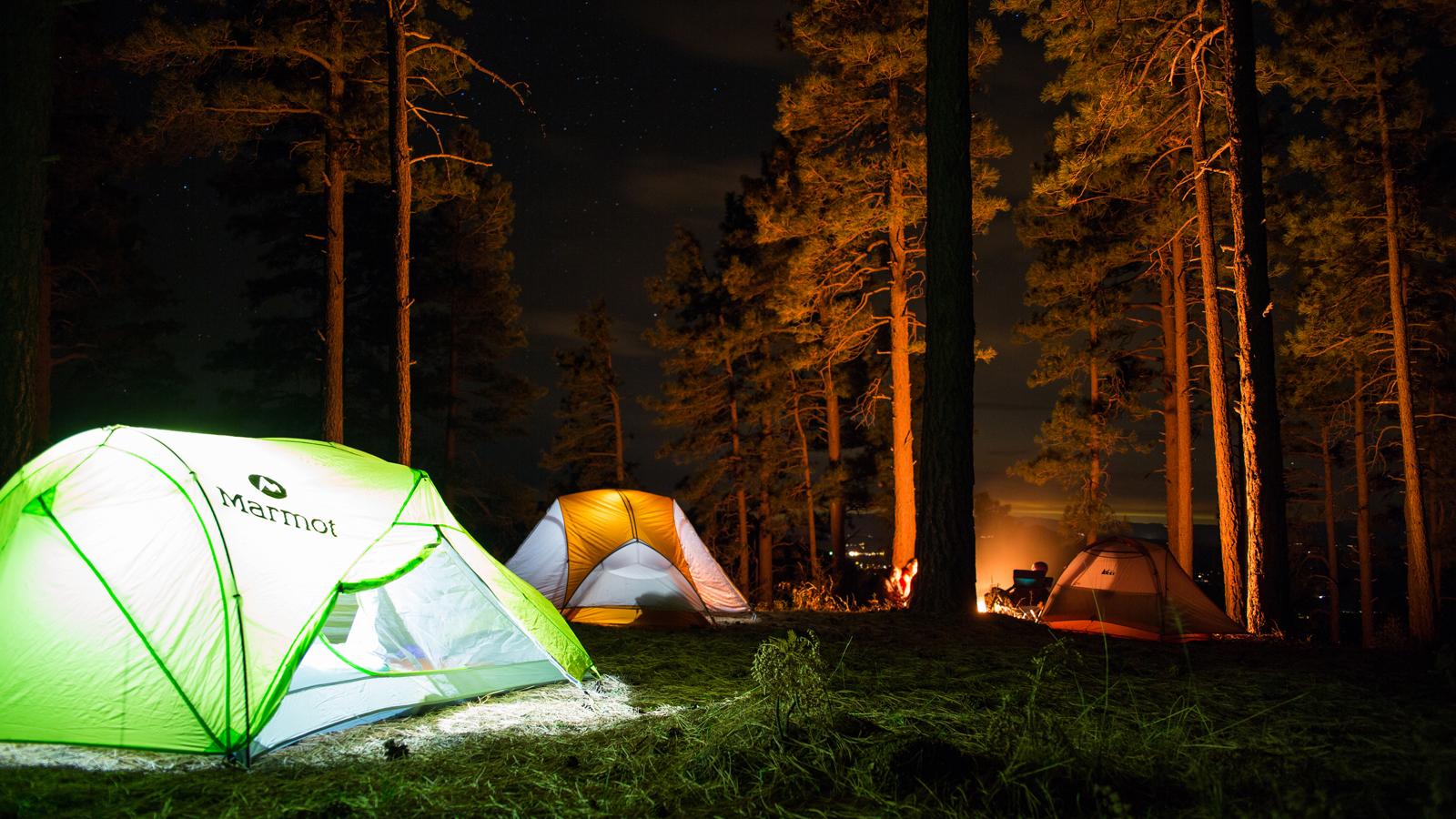 one-wild-life-custom-camp-experience