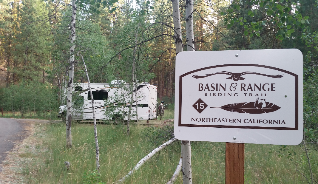 howards-gulch-campground-basin-and-range-birding-trail